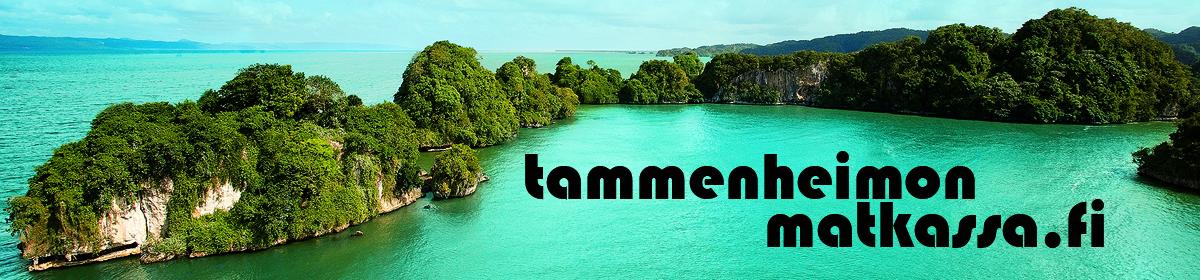 Tammenheimon matkassa