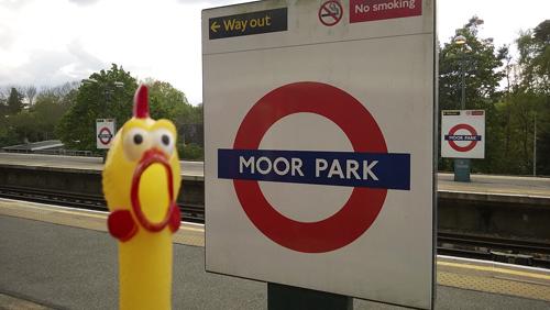 Moor-Park