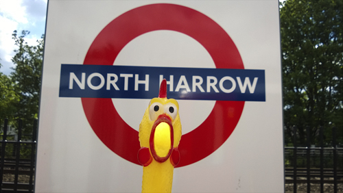 North-Harrow
