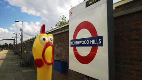 Northwood-Hill