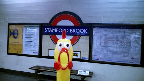 Stamford-Brook