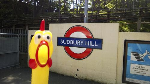 Sudbury-Hill