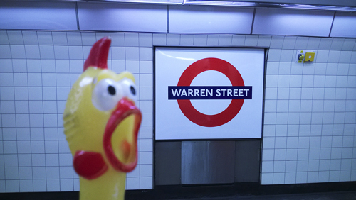 Warren-Street